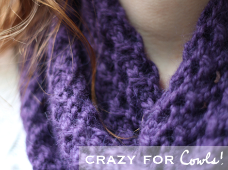Crazy-for-cowls_edited-1