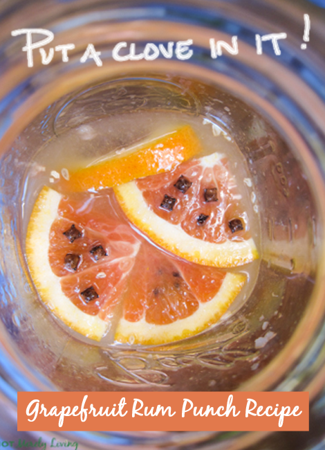 Grapefruit_Rum_Punch_Cocktail_Recipe_Cloves