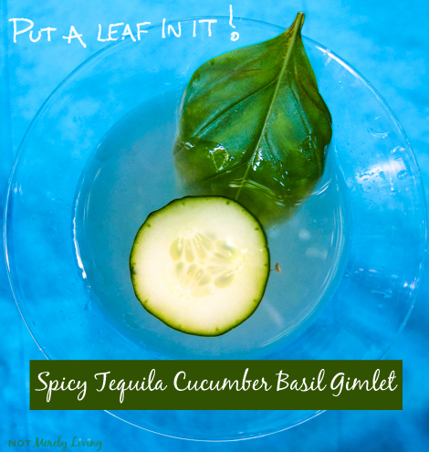 Put a Leaf in It // Inspired Tequila Gimlet